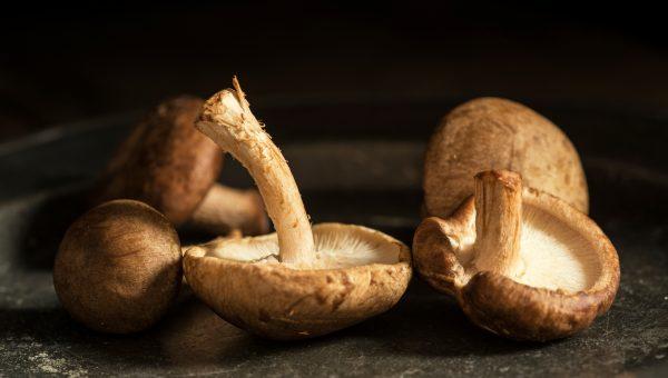 Crispy Shitake Mushroom Recipe