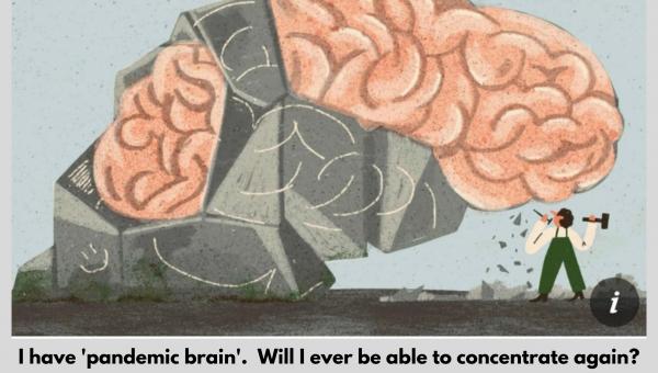 Pandemic Brain The Guardian Article